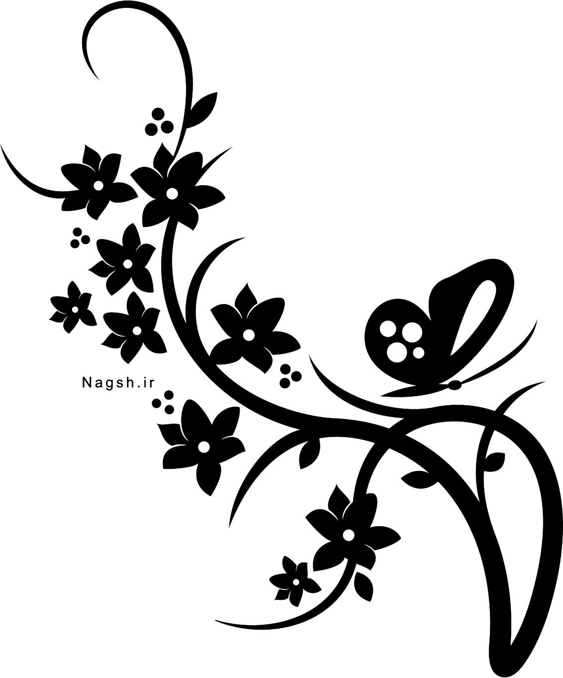 گل و بوته با زمینه شفاف