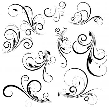 گل و بوته سیاه با زمینه سفید