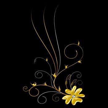 گل و بوته رنگی با زمینه مشکی