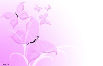 گل و پروانه بنفش در زمینه سفید