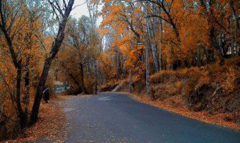 پاییز مشکین