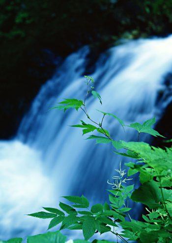 آب آبشار