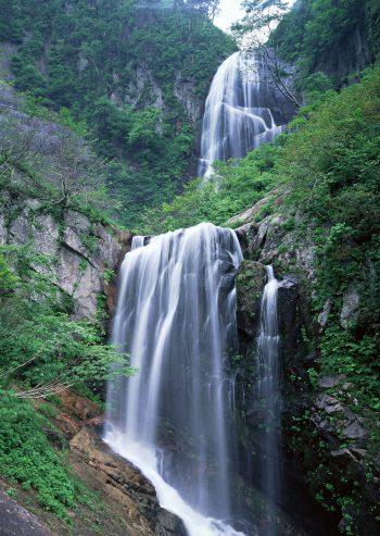 آبشار سر سبز