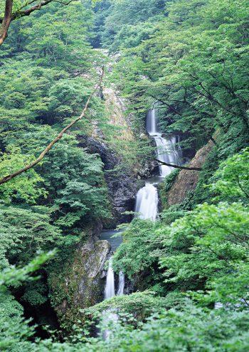 تصویری زیبا از آبشار