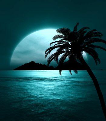 منظره ای زیبا از شب دریا