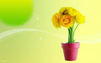 گلدان گل زرد