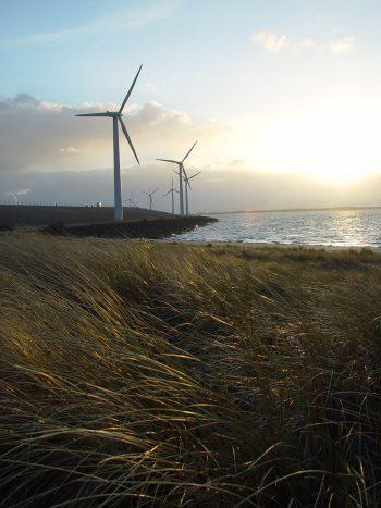 چشم اندازی از دریا و توربین های بادی