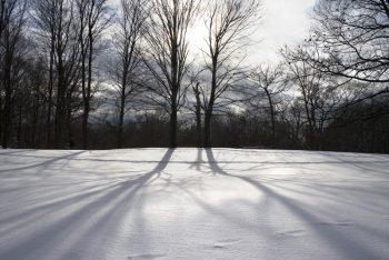 فصل سرد زمستان