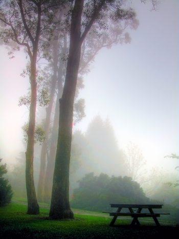 هوای مه آلود