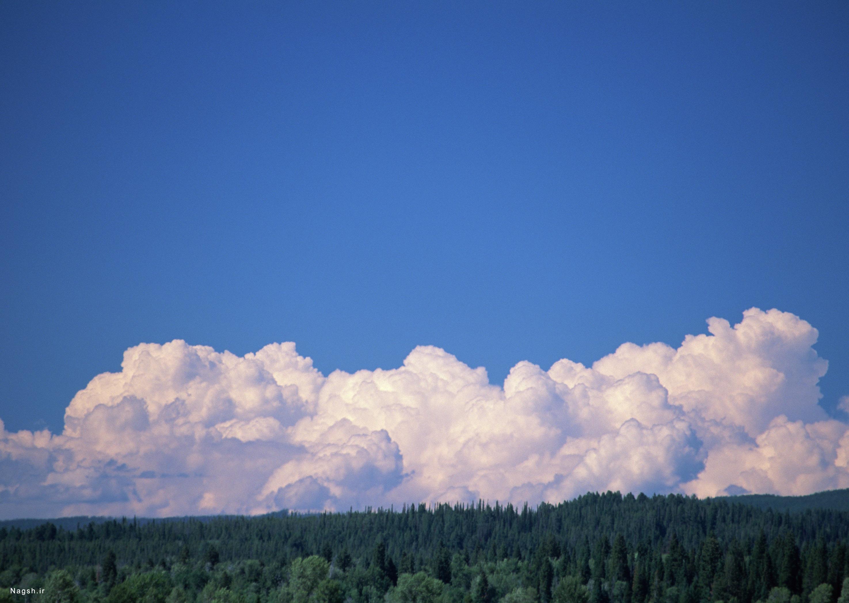 آسمان آبی با زمین سبز