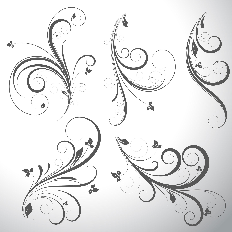 گل و بوته های سیاه و سفید