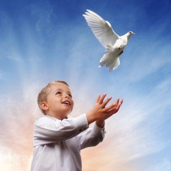 کودک و کبوتر در حال پرواز