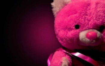 خرس عروسکی پشمالو