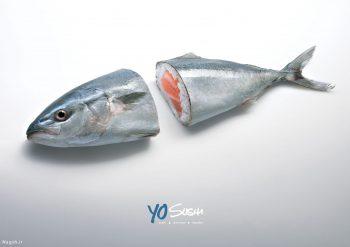 پوستر تبلیغاتی ماهی