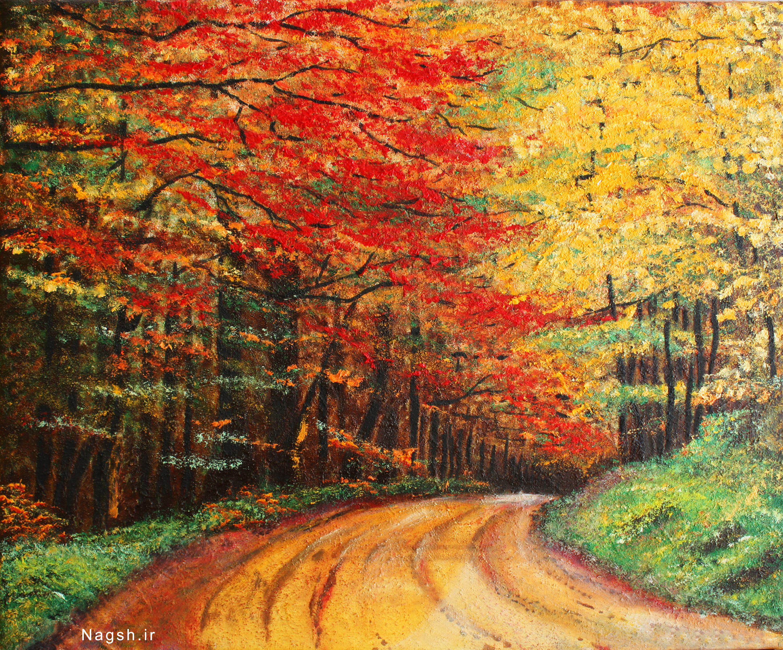 جنگل پاییزی
